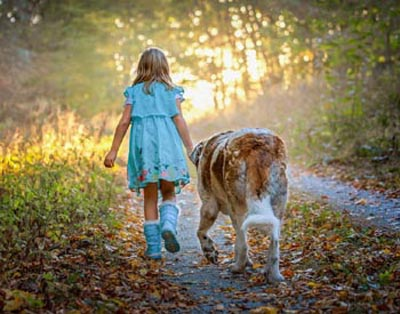 Leash Training Basics For You and Your Dog